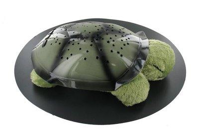 nachtlampje schildpad, sterrenhemel
