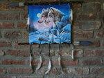 Dromenvanger-wolven